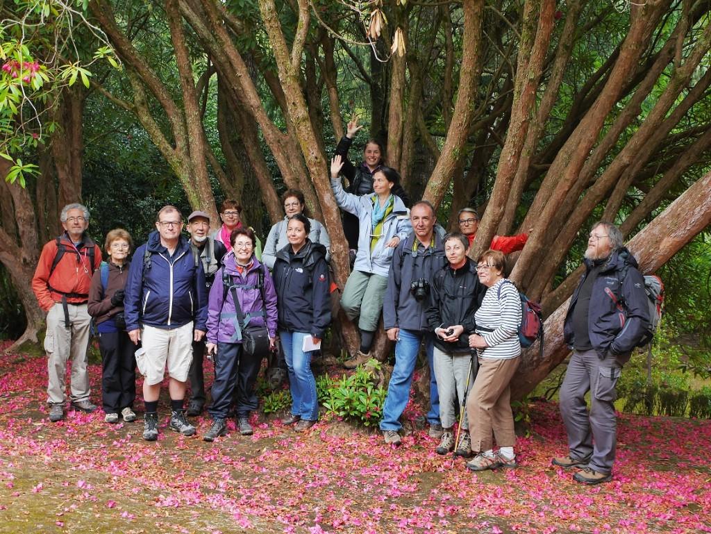 Le groupe de la régionale de Montpellier en excursion botanique à Madère.